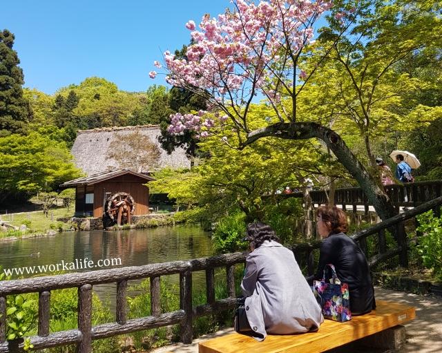 nagoya-botanical-garden.jpg